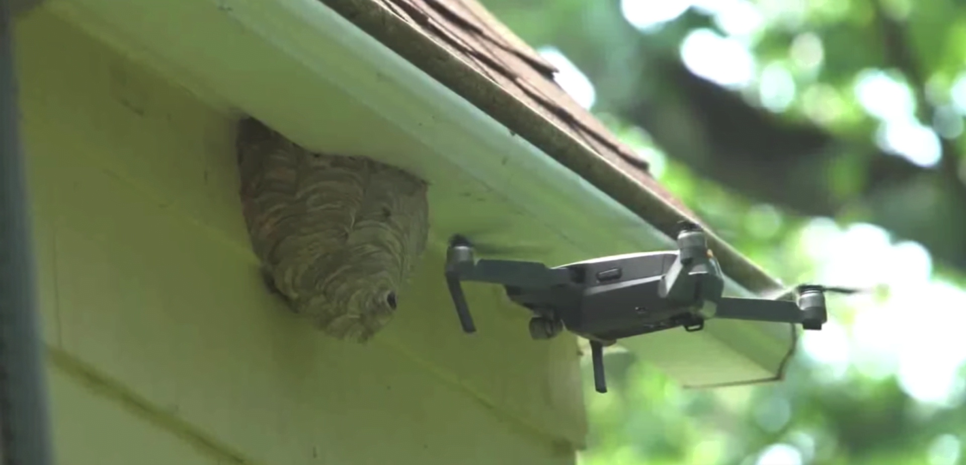 WaspNest Drone